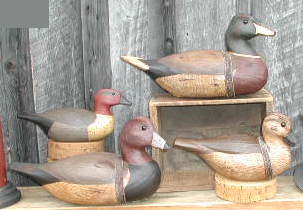 Duck Group